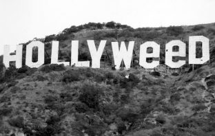 hollyweed-sign-