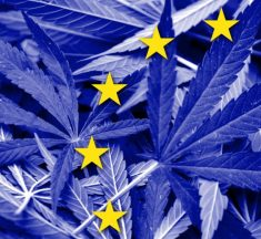 European cannabis testing market expected to reach $807.9m by 2025