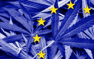 Europe cannabis