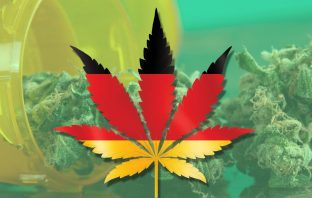 cannabis germany