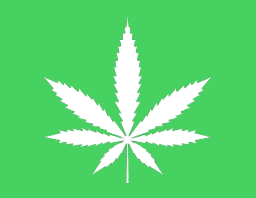cannabis graphic
