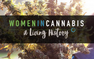 Women in Cannabis Study